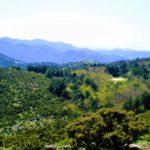 Ambiente&Natura