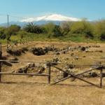 L'archeologia alla Borsa di Paestum